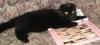 onezima: (glamourrrr_cat)