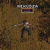 nekudza: (kilemol, merc, kill them all, убить нахуй, ja2)