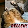 ariestess: NOT FOR PUBLIC SHARING (gabe belleh!)