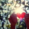 towerofhearts: (stock: paper heart)