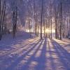 blizzardbox: (pic#9216840)