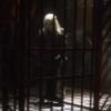 commandshumor: (Prisoner in my own mind)