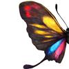 carriesagun: (Butterfly)