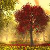wren08: (Autumn tree)