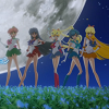 alexseanchai: The five Senshi from the end scene of the opening sequence of Sailor Moon Crystal (Sailor Moon Crystal five senshi)