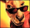 electrohead: it's actually Kangaroo Jack, but whatevs (Scooter/Bang-Bang)
