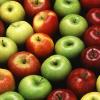 applewine: (apples)
