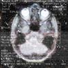 nakimushi: (Мои мозги)