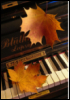 annunziata: (Осень)