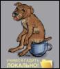 vinogorov: (Учимся гадить локально)