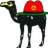 kakurin: (верблюд)