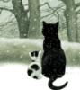 subst: (winter cats)