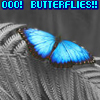 ysabetwordsmith: (butterflies)