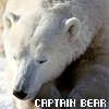 ysabetwordsmith: (Captain Bear)