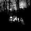 livelyfibers: (treeshouse)