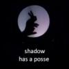 sharon_masters: (posse)