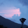sistabro: (blue and pink sky)