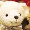 taximancy: (teddy bear)