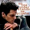 siljamus: (bsg - lee understands the pigeon)