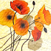 nightdog_barks: Red poppies against an ivory background (Poppies on parchment)