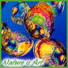 castalia: (Nature is Art - mussels)