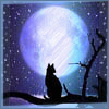 sunrunner: (MoonlightKitty)