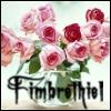 fimbrethiel: (Fim spring roses)