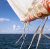 anshp: (wind)