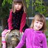 la_rainette: (Girls with a Big Ape)