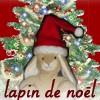 la_rainette: (lapin de Noel by Ally)