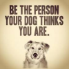 ayebydan: (dog)