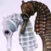 jariel: (seahorse)