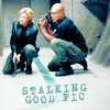 figs_sg1_rec: (sam teal'c stalking fic)