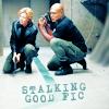 figs_sg1_rec: (sam teal'c stalking fic)