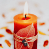 idleleaves: (leaf and fire)