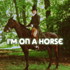 donata: (mr darcy on a horse)