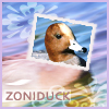 zoniduck: (Default)