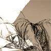 arbitraryally: (Let Sleeping Assassin's Lie)