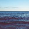 museaway: ocean (ocean)