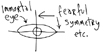 "rosefox: A diagram labeled ""immortal eye"" and ""fearful symmetry etc."" (geeky)"