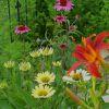 gairid: Summer Garden, backyard (Seasonal - Garden)