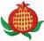 tuchiki: (pomegranate)