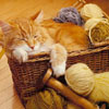 jamethiel: A cat lies in a basket of wool, looking happy (CatWool)
