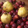 jamethiel: Three yellow quinces on top of a bed of red cherries/plums (Quince)