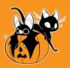 mistee: (halloween cat)