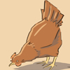 industrialfairytale: (chicken!)