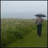 balinares: (rain)