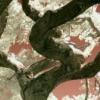 cahn: (ir-tree)