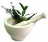 sapphire_storm: (herbs)