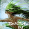 """syntaxofthings: Fae with text """"Tempestuous Fae"""" ([fae] Tempestuous Fae)"""